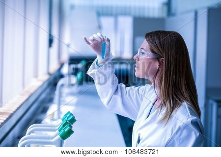 Scientist looking at test tube in the laboratory at the university