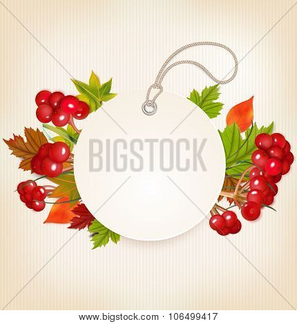 Autumn Label With Viburnum And Colorful Leaves. Vector Illustration
