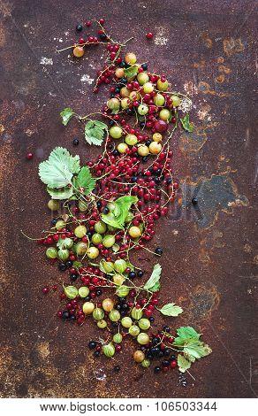 Summer berries on rusty grunge metal background, top view