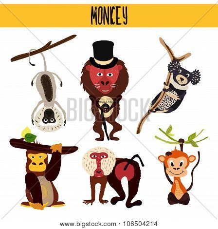 Cartoon Set of Cute Animals monkeys living in different parts of the world forests and tropical jung
