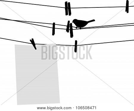Blank paper sheet on clothesline with clothespins and bird. Vector illustration.