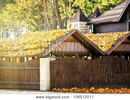 Roofs wooden buildings covered with autumn leaves