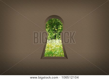 Keyhole on the wall, the door to nature