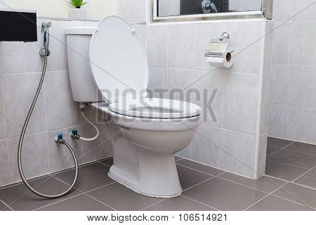 White Flush Toilet In Modern Bathroom Interior