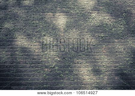 Image Of Old Mossy Wall In Day Time