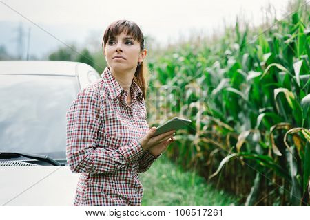Woman Lost In The Countryside
