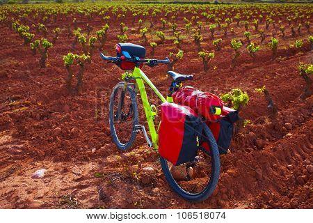 La Rioja vineyard and bike in The Way of Saint James biking