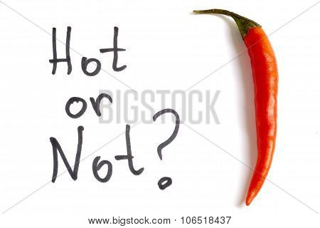 Red Hod Chili Pepper White Background