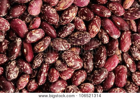 Raw Whole Colorful Beans Pattern