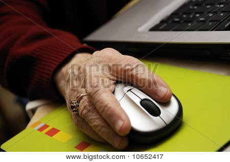 Senior Working On Computer