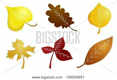 autumn naive leaves