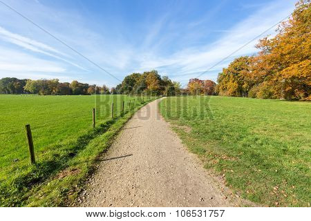 Sandy Path Between Green Meadows With Autumn Colors