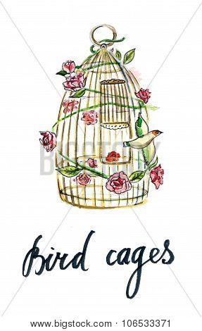 Gold Cage For Bird