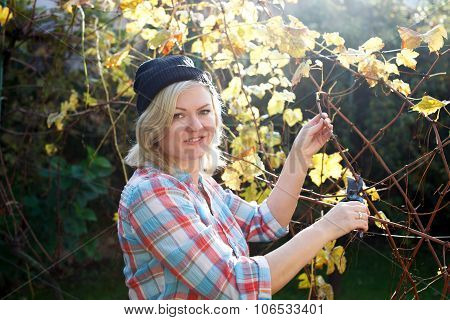 Blonde Woman Trim Branch By Small Hedge Cutter