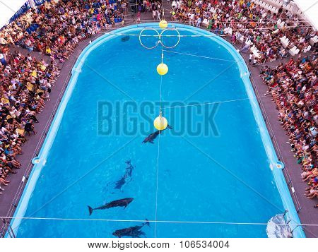 Odessa, Ukraine - July 12, 2015: Ecstatic Happy Spectators Of All Ages Delight In Watching Vivid Pic