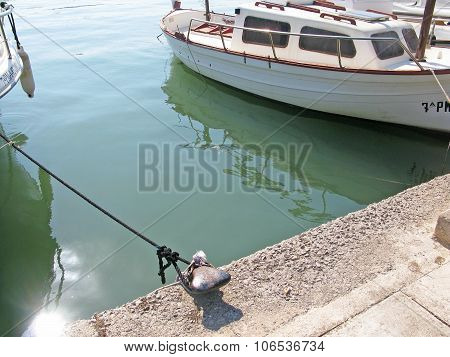Mooring knob and rope in green water