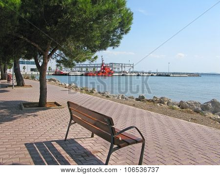 Tree and bench with a view near the port