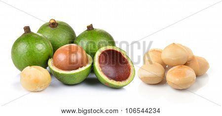 Fresh Macadamia Nut On A White Background