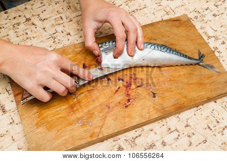 A Woman Chef Slices A Fish Mackrel On A Wooden Board