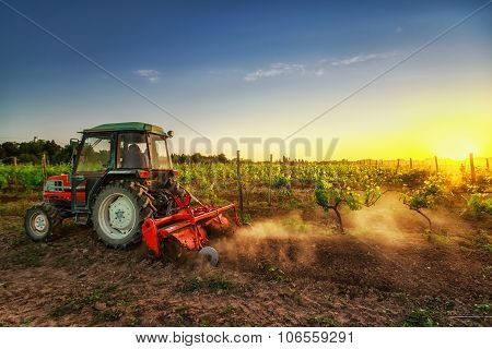 Tractor In The Vineyard At Sunset