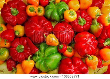 Fresh Garden Vegetables, Papper Mix Background