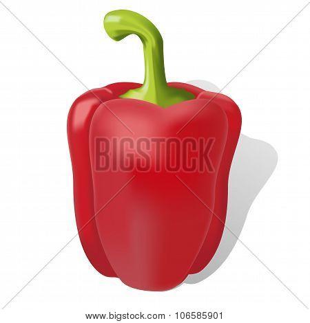 Sweet Ripe Red Bell Pepper