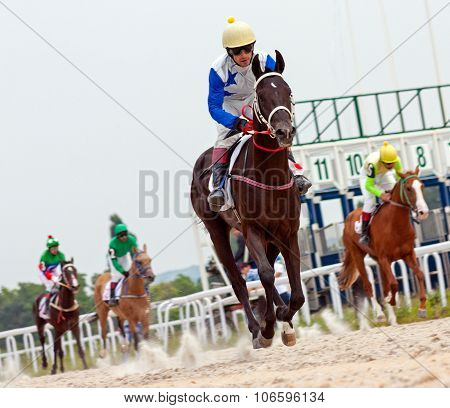 Finish Horse Racing