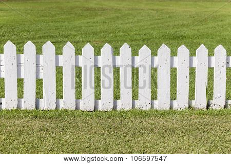 Cricket Boundary Fence