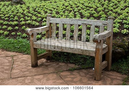 Wood Chair on Garden