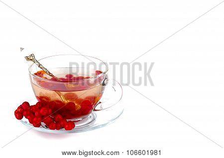 Hot Herbal Tea With Honey And Viburnum,