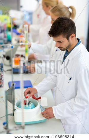 Young technicians work with test tubes putting them in shaker in lab
