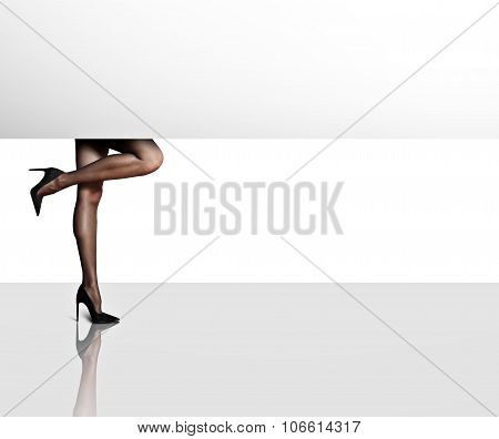 Woman;s Legs In Stockings. White Space For Text