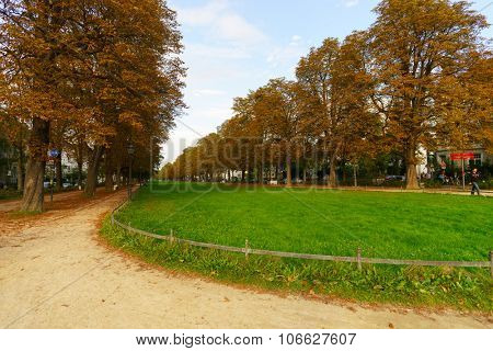 BONN, GERMANY - SEPTEMBER 18, 2014. View of park in Bonn. Bonn is a city on the banks of the Rhine and northwest of the Siebengebirge in the German state of North Rhine-Westphalia