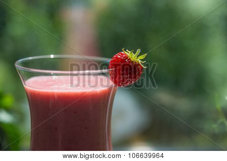 Fresh Strawberry Smoothie In Cocktail Glass
