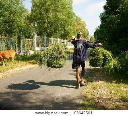 Vietnamese, Carry,  Grass Basket