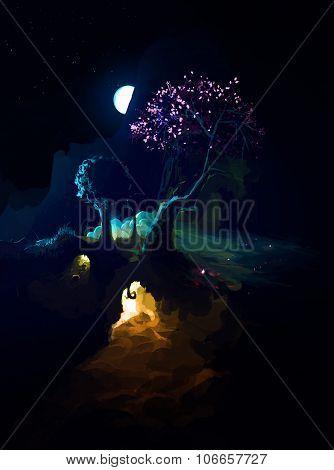 Night Scenic Landscape