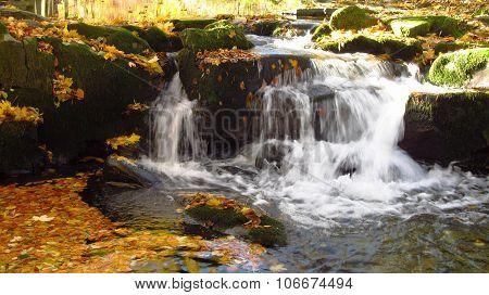 mountain brook in autumn