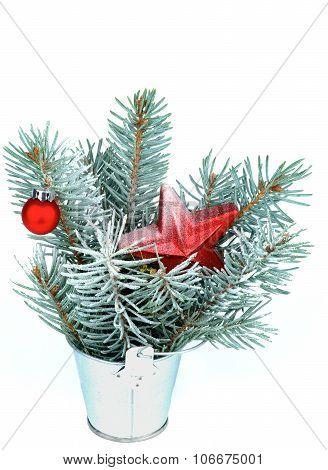 Bunch Of Spruce Branch