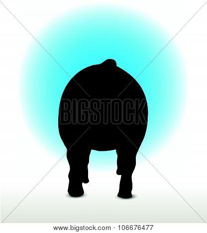 Pig Silhouette