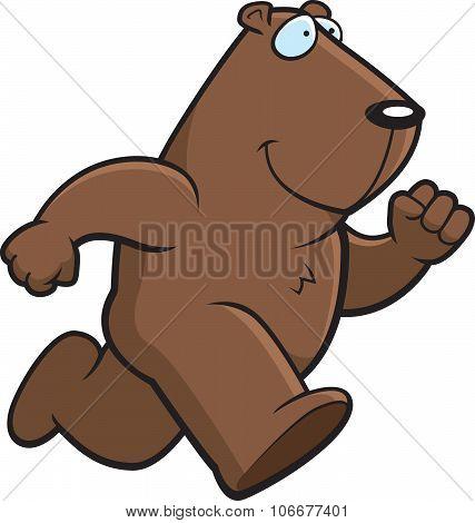 Groundhog Running