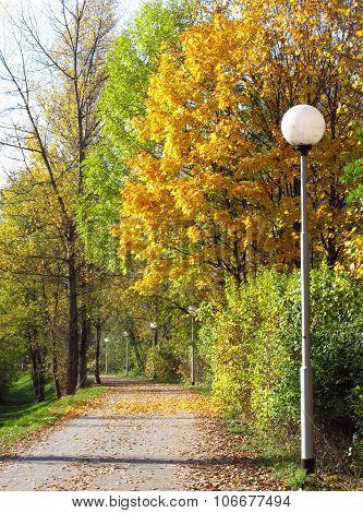 calm autumn