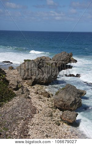 Rocks on Bathsheba beach