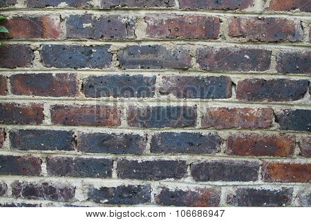 Brick wall texture for your background.