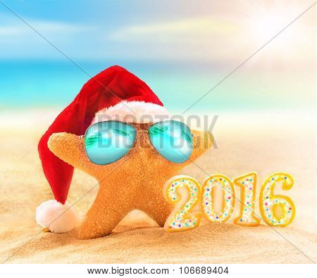 Starfish In A Santa Hat And Sunglasses