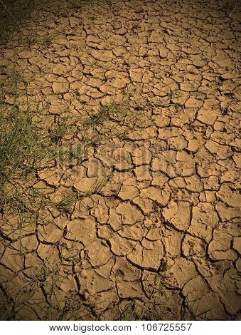 Drought Land And Environment