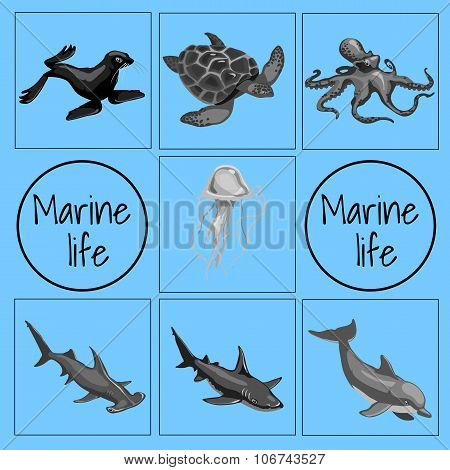 Set of marine animals, card with space for text