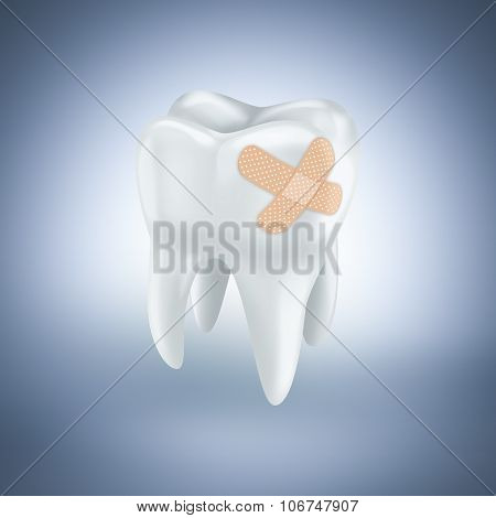 Tooth With Plaster