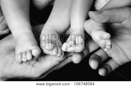 Baby Twins Feet In Parents Hands