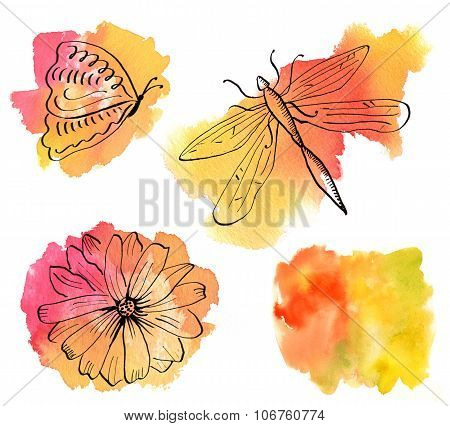 A set of drawings: a butterfly, a dragonfly, a flower, on bright watercolour stains