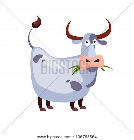 Cow Chewing Grass. Vector Illustration